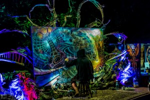 jacob avanzato - enchanted forest-2725