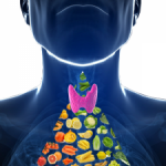 What You Need to Know About Diagnosing and NATURALLY Treating Thyroid Conditions