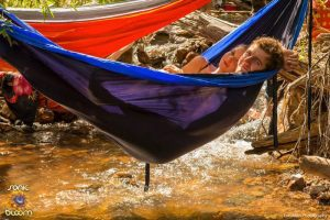 River-and-hammocks-sonic-bloom-2016